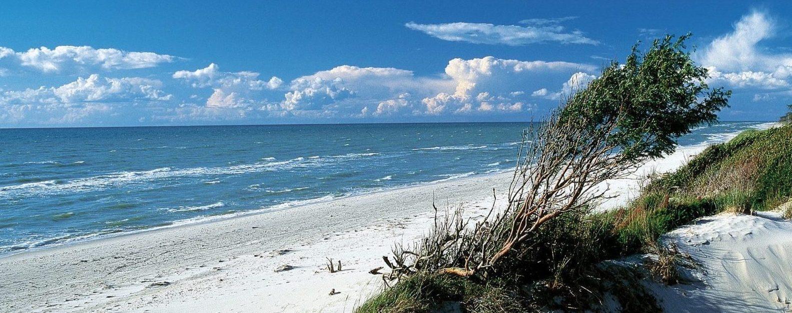 Schönste Strände der Ostsee: Westrand auf dem Darss