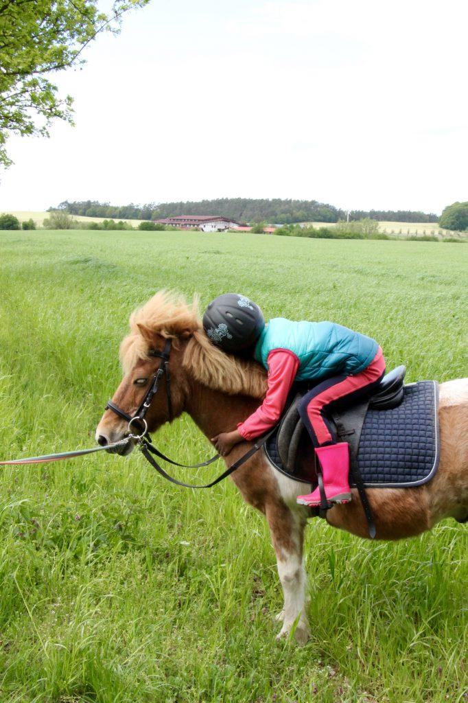 Ponyreiten Golchener Hof