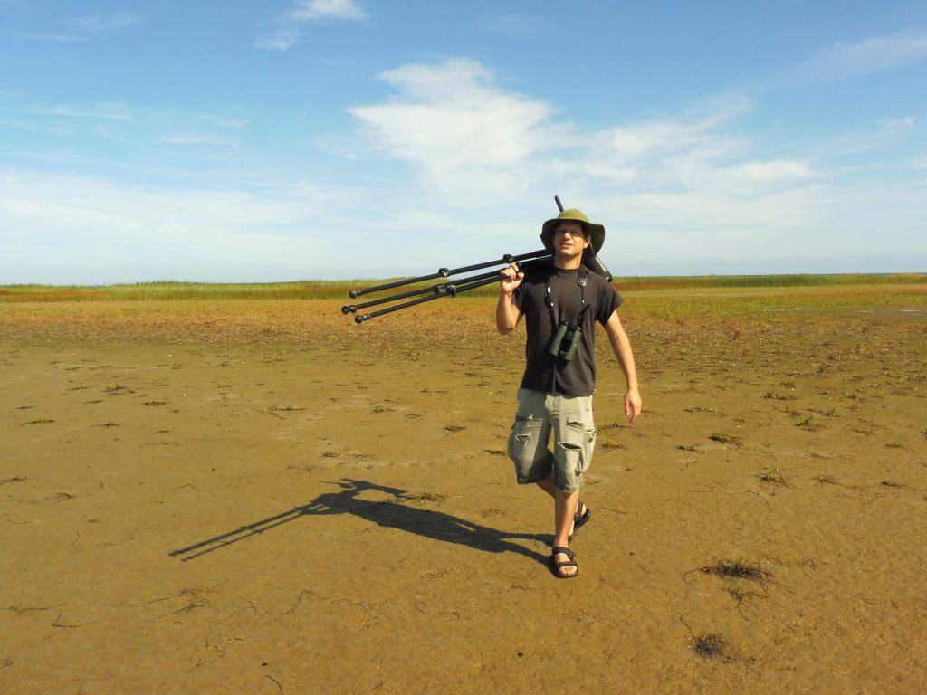 Vogelschutzwart Vogelschutzinsel Langenwerder vor Poel Ostsee